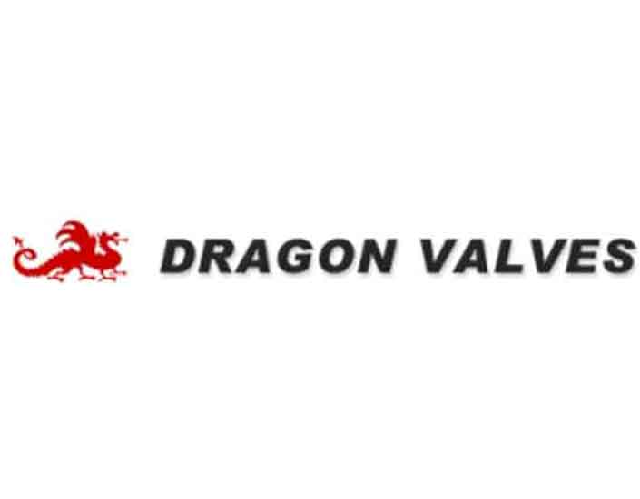 dragon valves logo